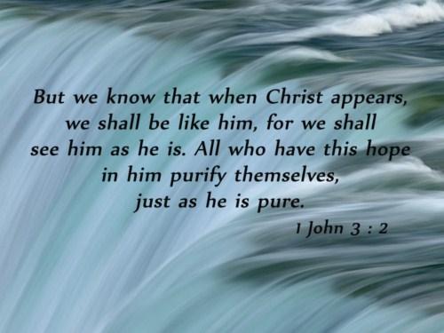1 John 3:2 Image