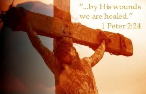 1 Peter 2:24 Image